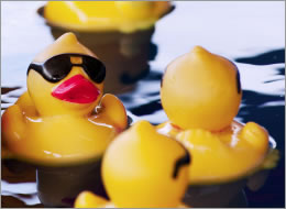 Entenrennen: Freizeitwert und Spaß